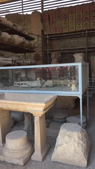 pompeii_10